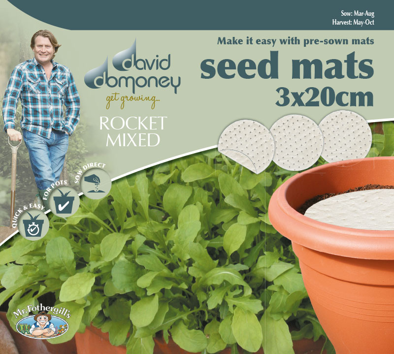 Grow your own Mat Rocket seeds