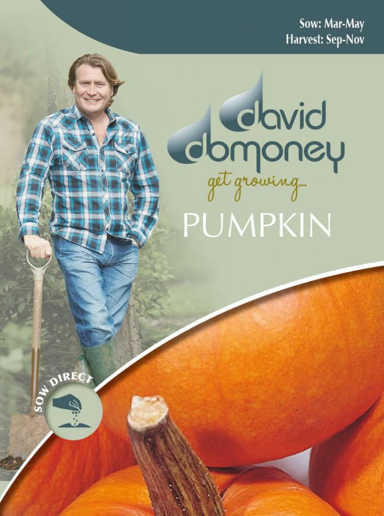 Grow your own Pumpkin seeds