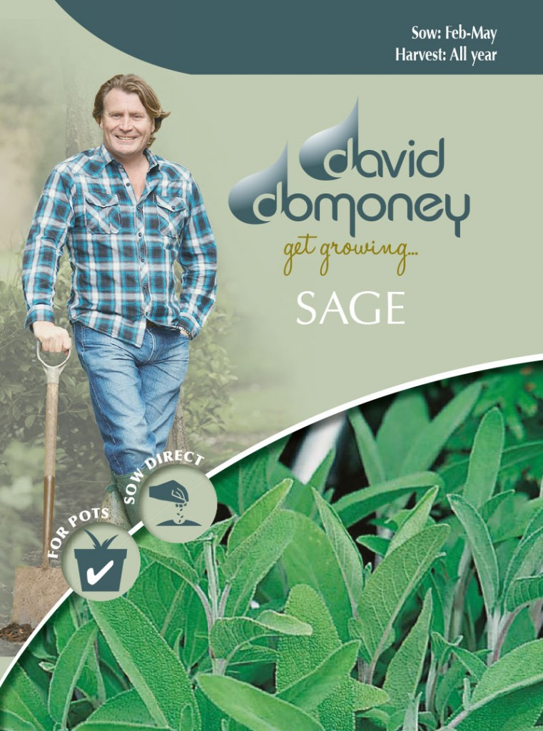 Grow your own Sage seeds