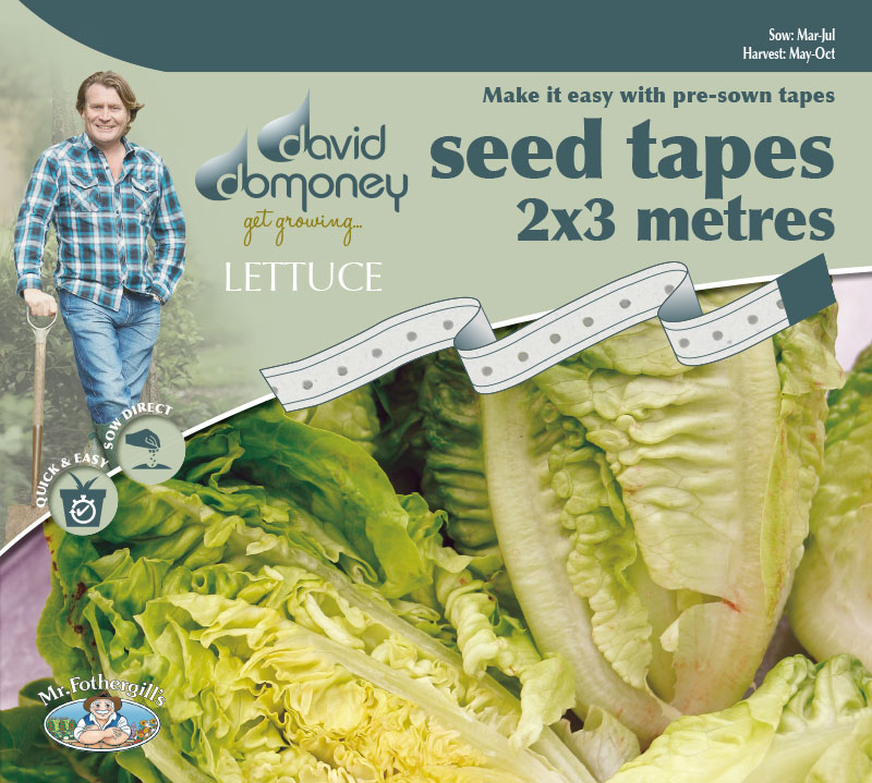 Grow your own Lettuce Little Gem Seed Tape