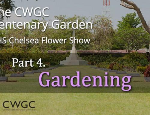 The CWGC Centenary Garden – Gardening