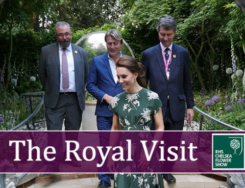 The Royal Visit