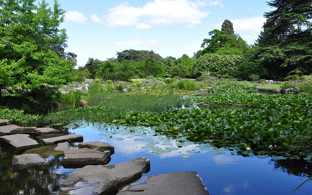 cambridge-botanic-garden