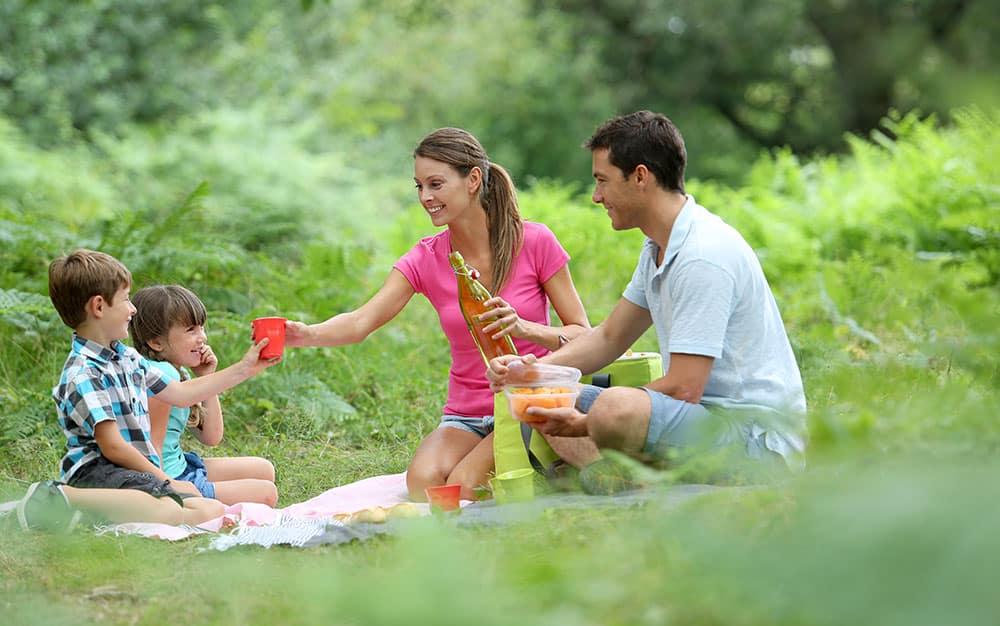 picnic-family-park