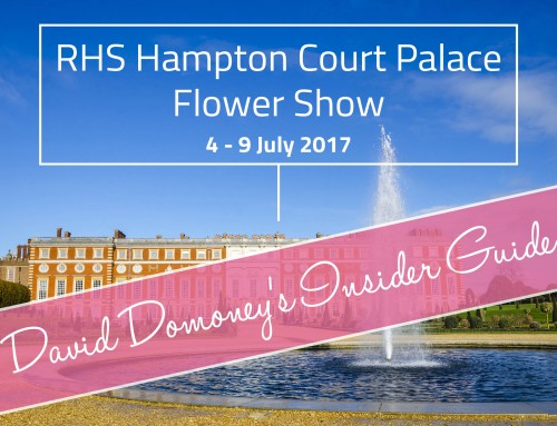 RHS Hampton Court Palace Flower Show 2017 Insider Guide