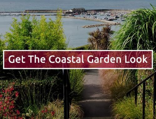 10 plants for a coastal garden style