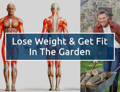 Gardening is a great way to lose weight and keep fit