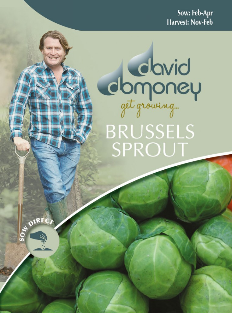 Grow your own Brussels Sprout seeds