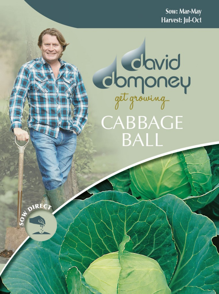 Grow your own Cabbage Ball seeds