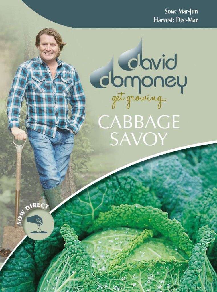 Grow your own Cabbage Savoy seeds