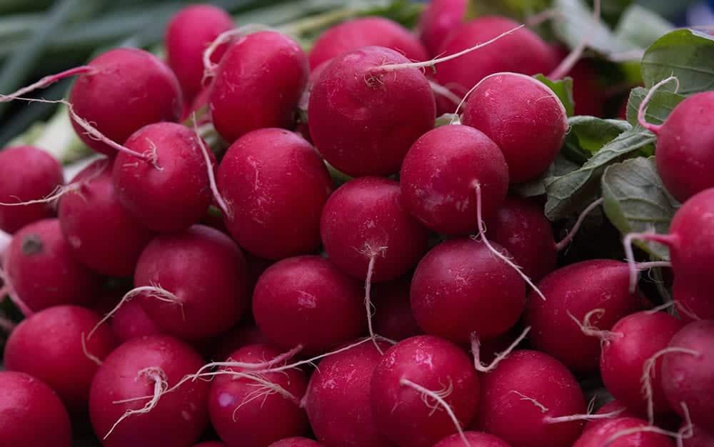 Pink-radishes