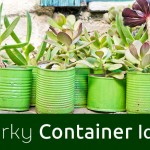 quirky container related blog