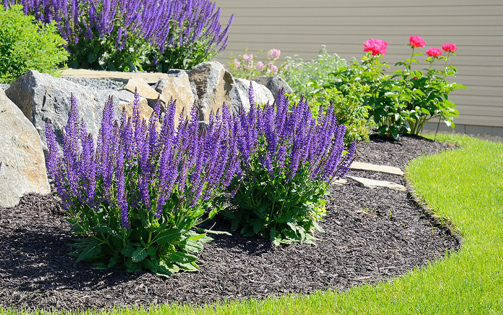 slate mulch flower bed