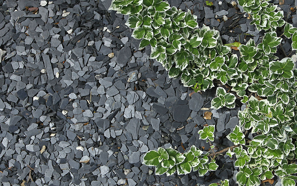 slate mulch