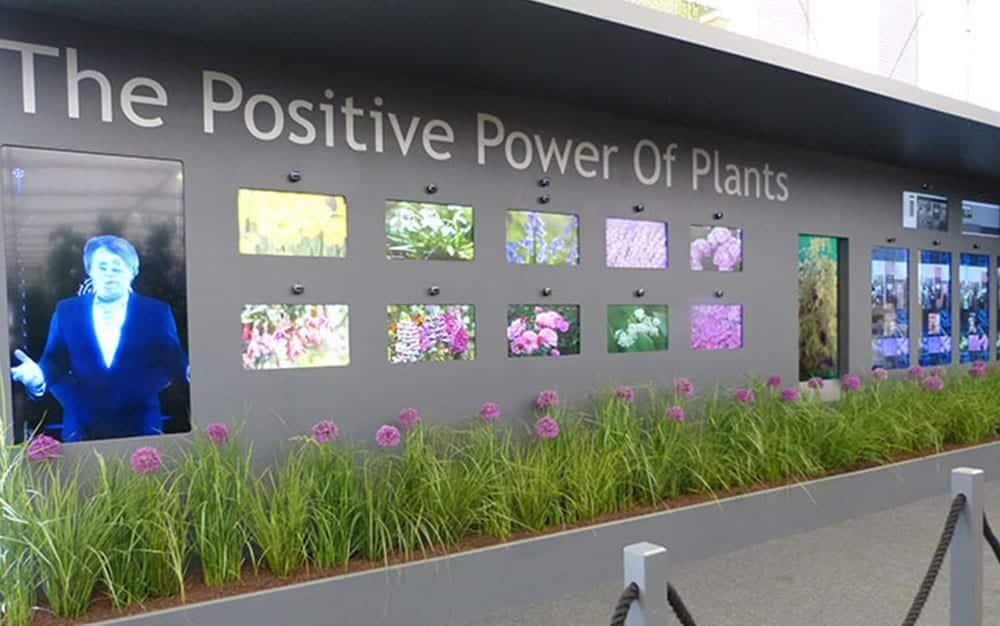 positive power of plants