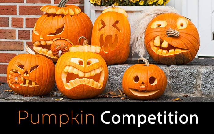 Pumpkin Competition