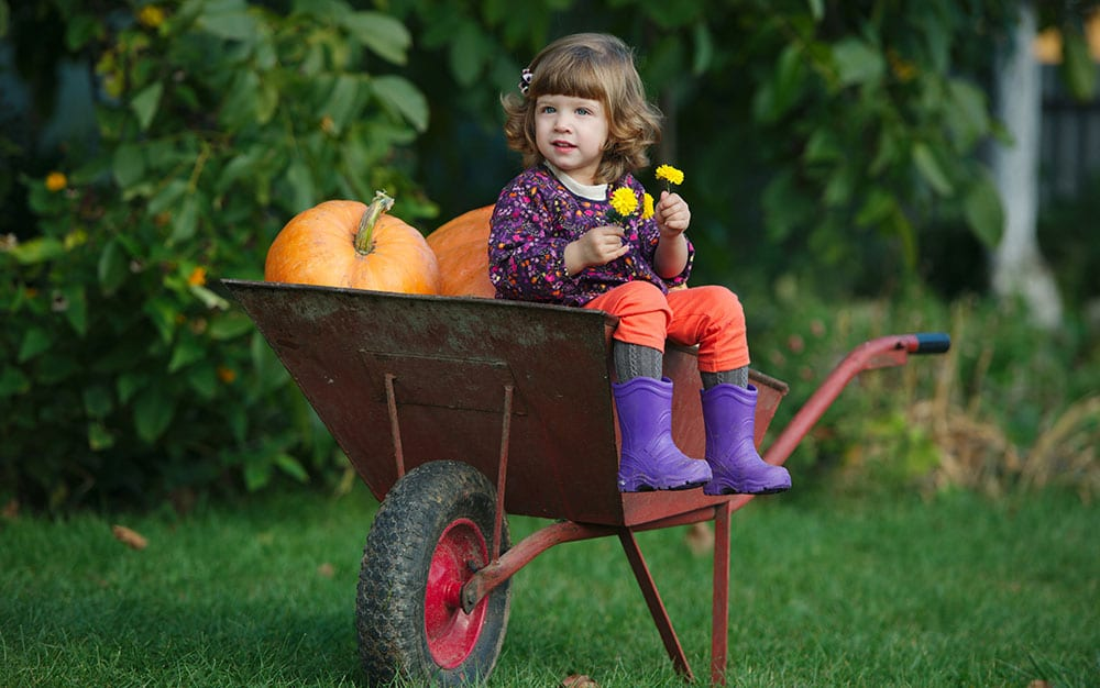 girl-wheelbarrow-pumpkin