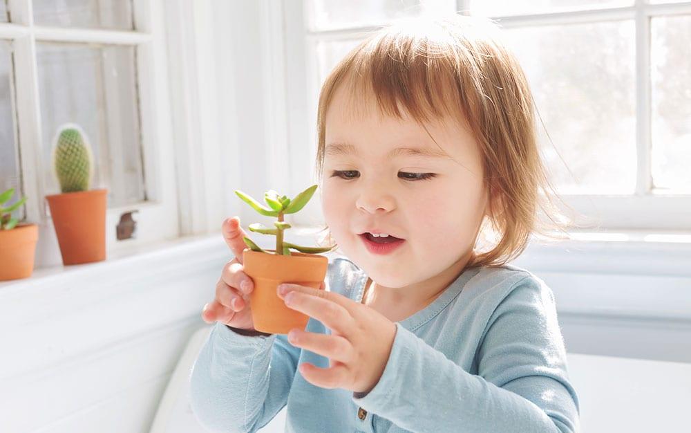 kid-holding-plant-smiling