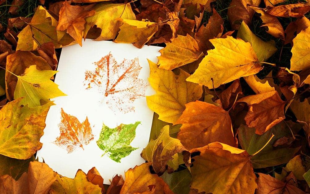 leaf-stamps