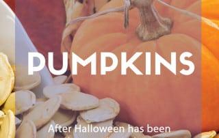 ways to reuse pumpkins