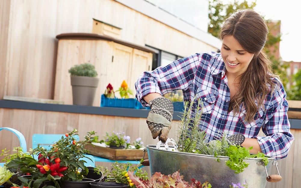 happy plant gardening