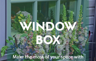 How to create the perfect window box