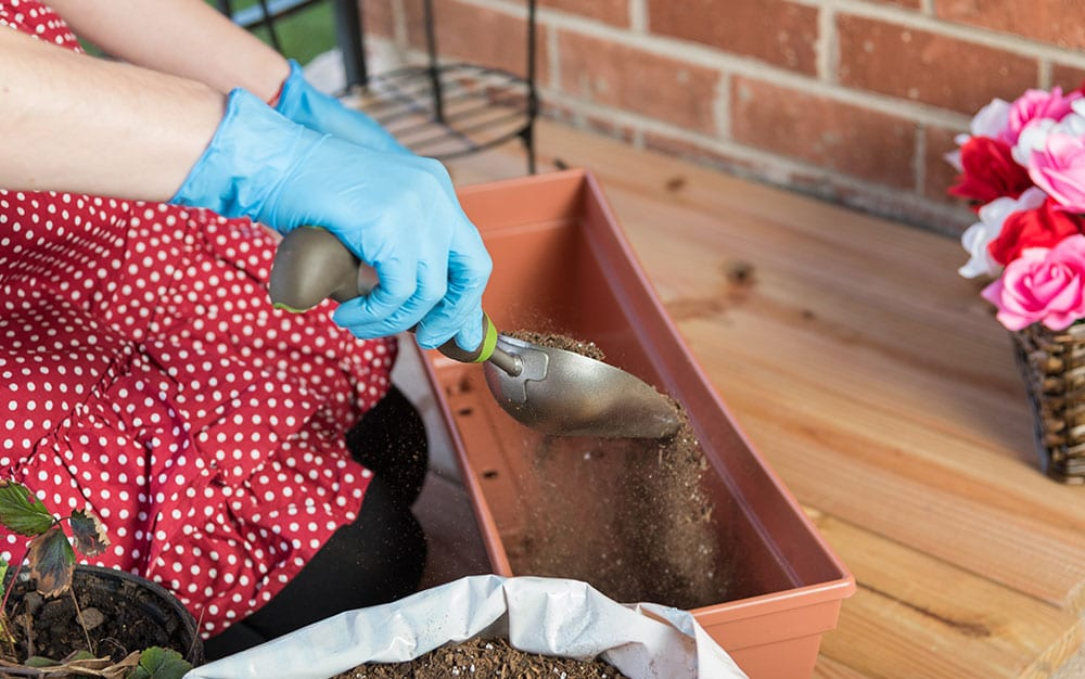 filling-window-box-with-soil