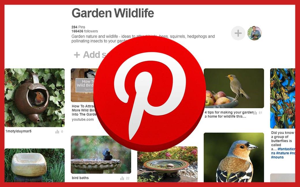 garden-wildlife pinterest board