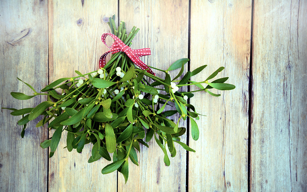mistletoe-hanging-up