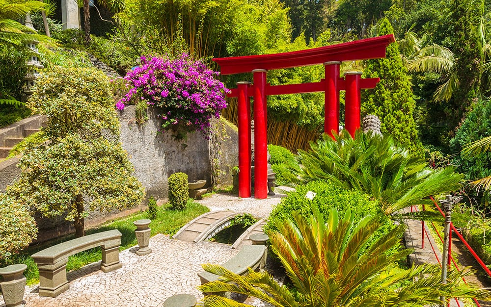 design ideas for a japanese garden david domoney rh daviddomoney com japanese garden design ideas for small gardens japanese maple garden design ideas