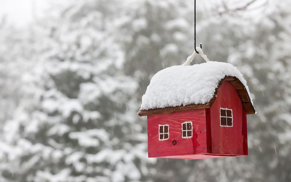 bird-nesting-box