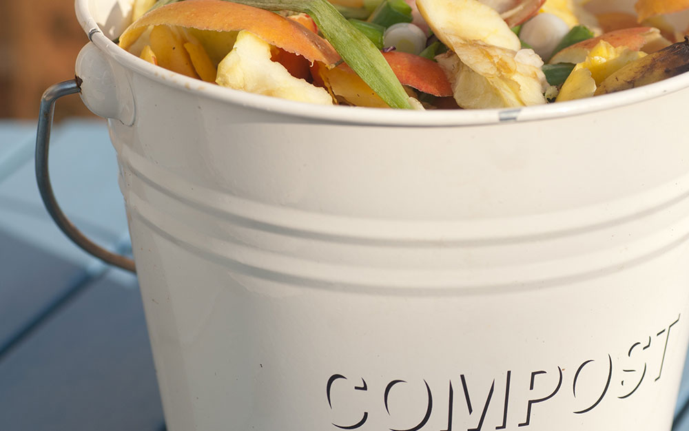 compost-bucket