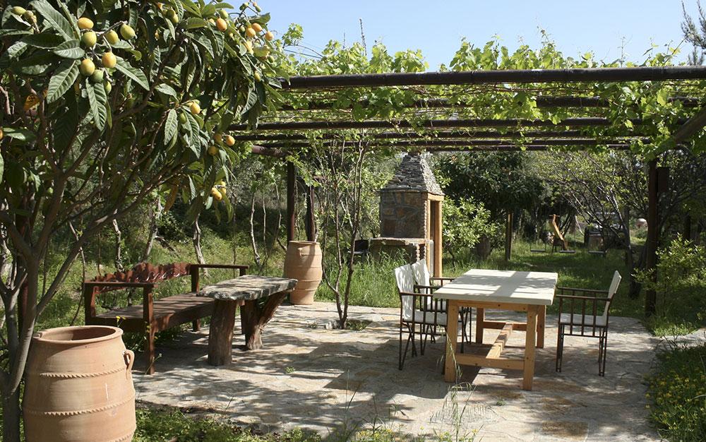 Garden Design: Ideas for Designing a Mediterranean Garden ...