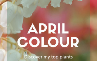 april colour