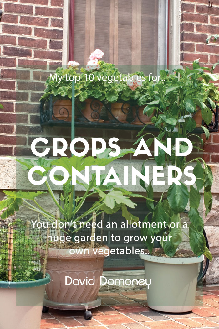Top 10 Vegetable Crops for Containers - David Domoney
