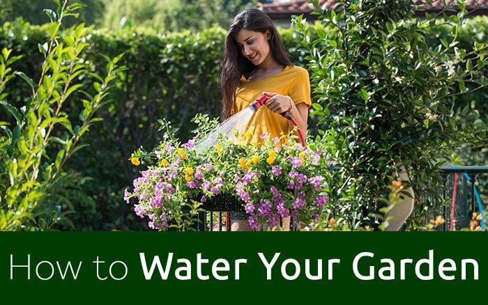 Watering garden with YOYO hose