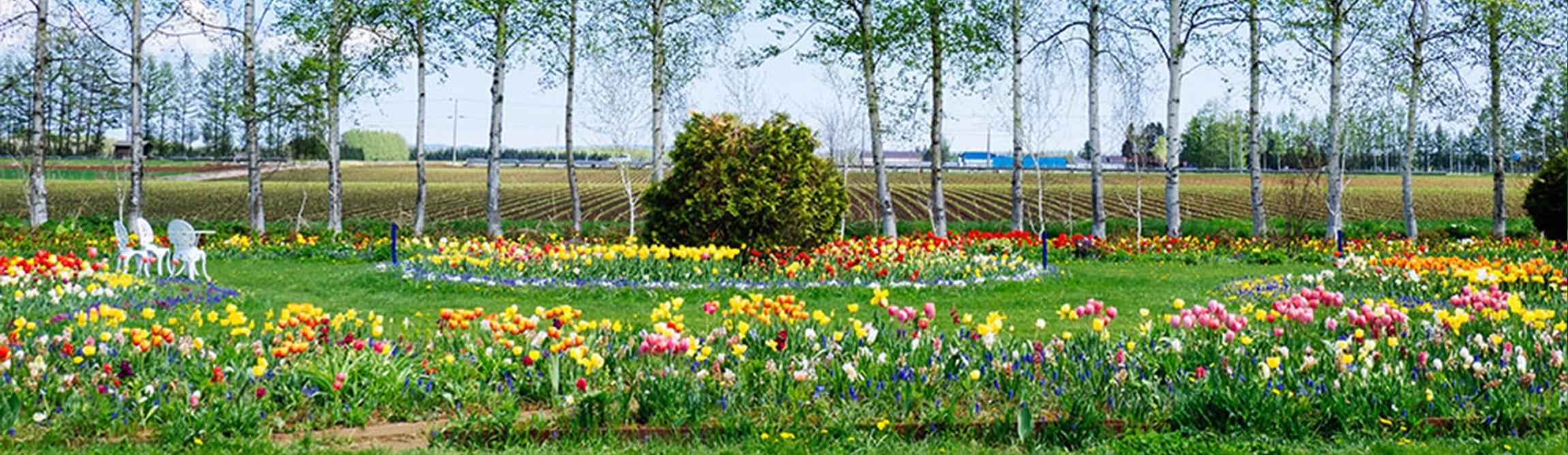 Large-garden