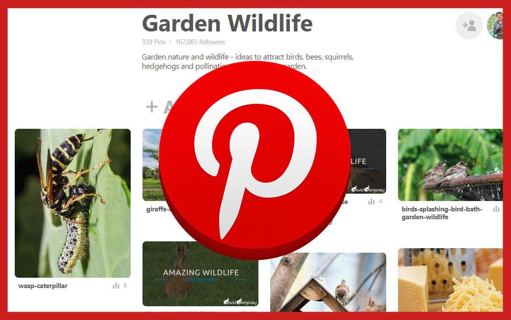 Pinterest-Board-Garden-wildlife