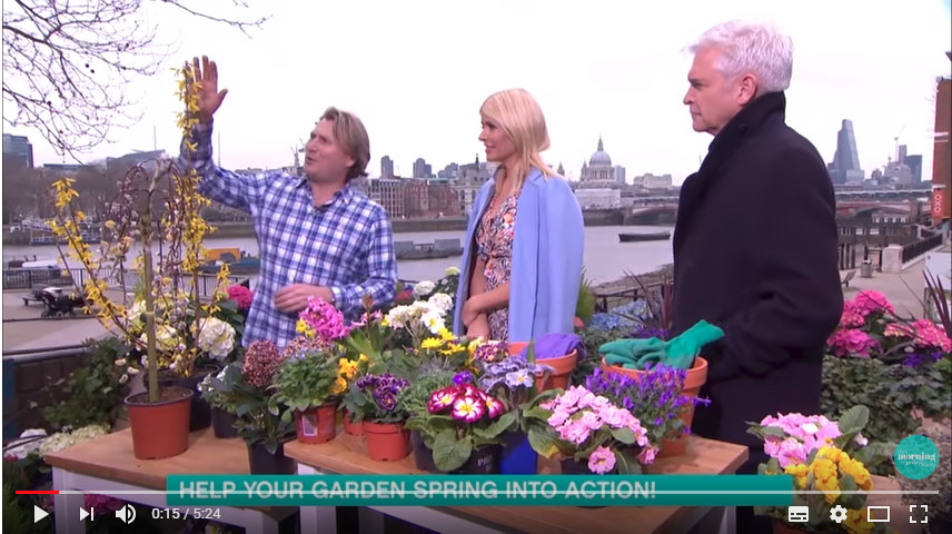 Spring into action video