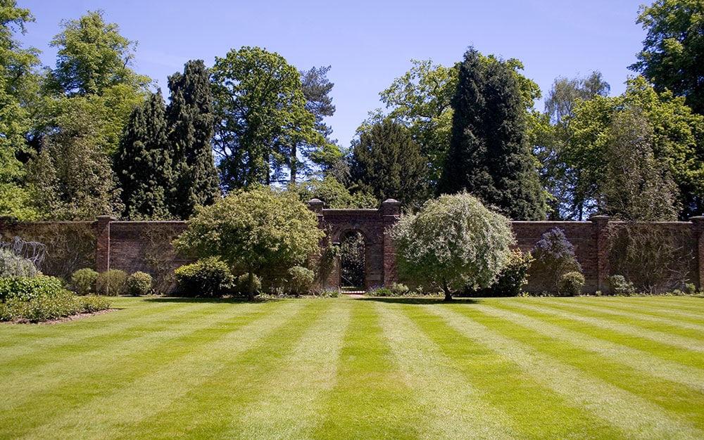 Striped-garden-lawn