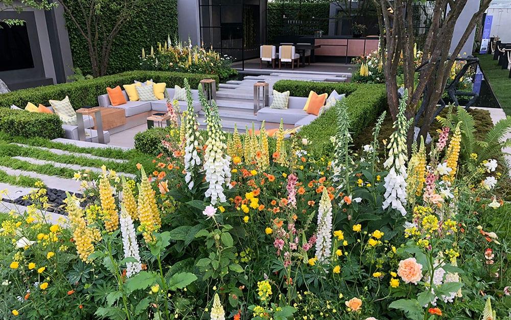 Prime Cottage Garden Ideas Hints Tips David Domoney Download Free Architecture Designs Viewormadebymaigaardcom
