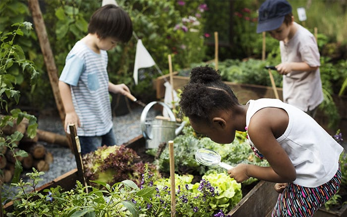 10 summer garden ideas for kids