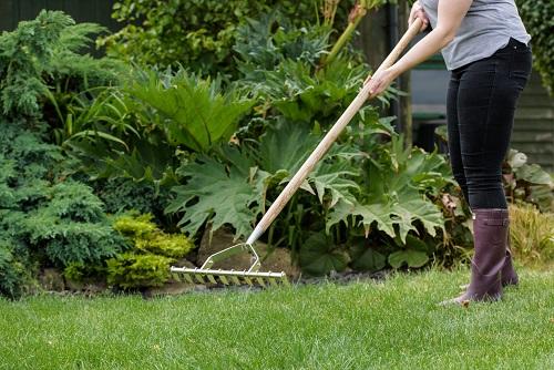 Lawn-and-rake