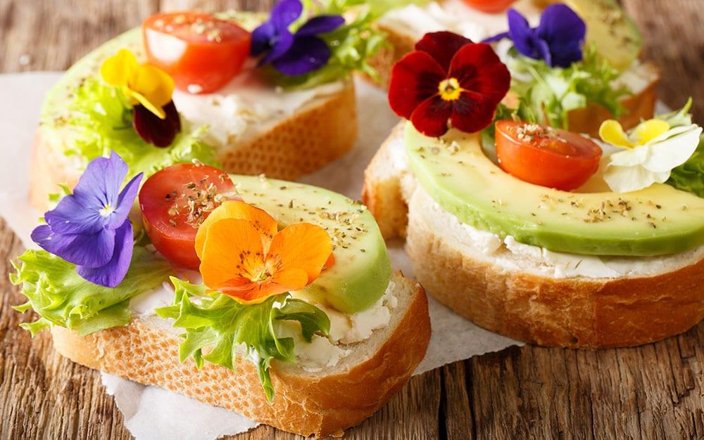 Viola-sandwiches