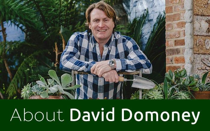 David Domoney with trowel and plants