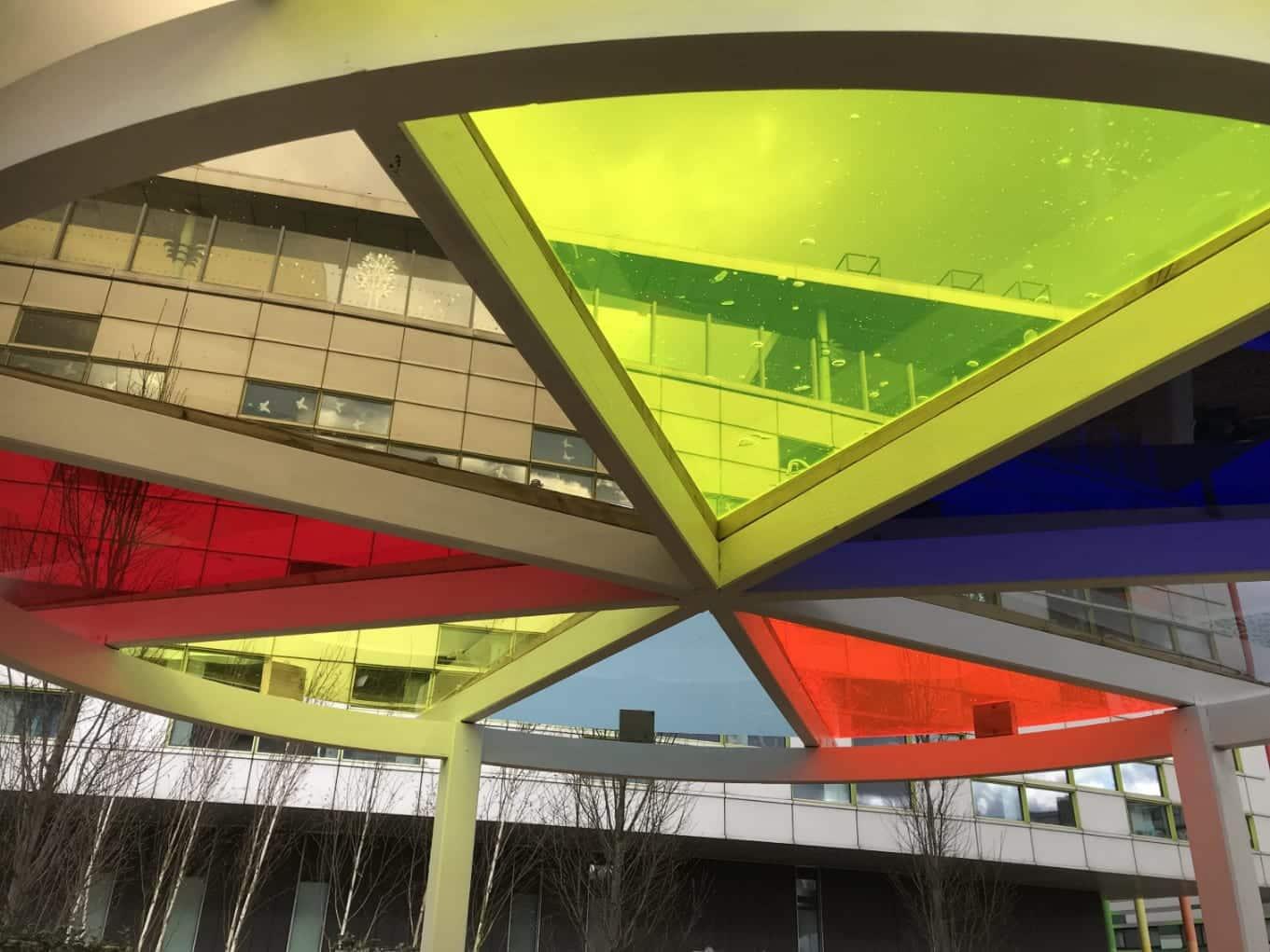 View through the canopy - full spectrum.
