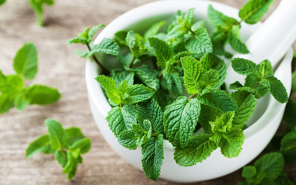 Spearmint-with-pestle-and-mortar