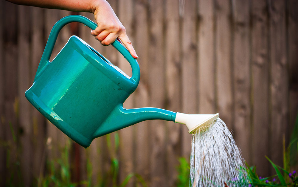 Watering-can-pouring-water