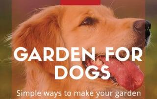 garden for dogs