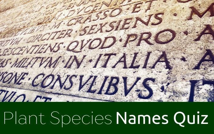 Plant Names Quiz Cover